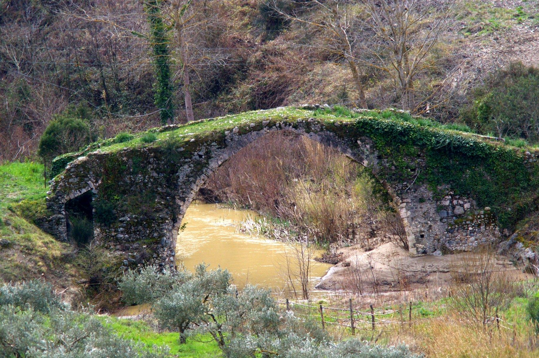 Ponte-ricoperto-di-verde-Vito