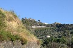 macchia-mediterranea-Talarico